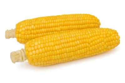 Кукуруза Іспанія 2 шт — Фото 0