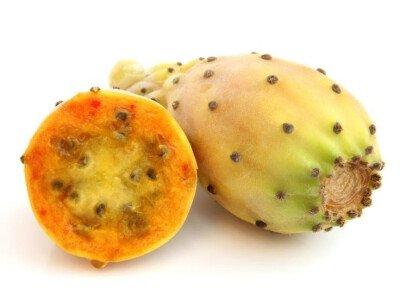 Кактус фрукт (съедобный) — Фото 0