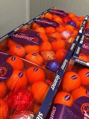 Апельсин Іспанія Преміум — Фото 3